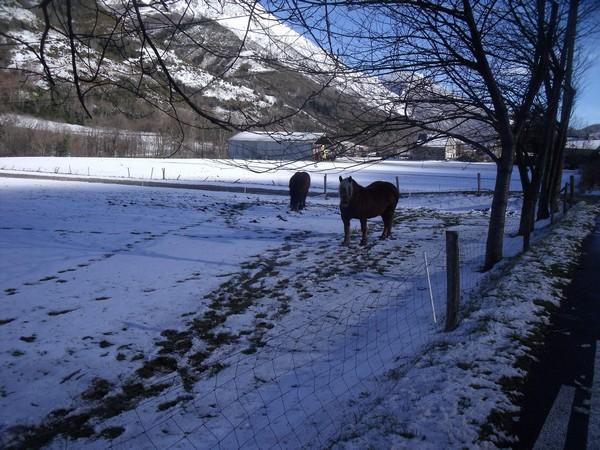 Photos Sainte Marie de Campan le 03 février 2013 020