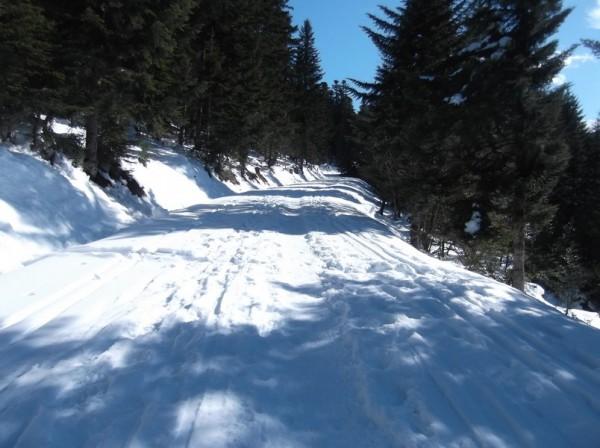 Col d'Aspin (vélo + marche) le 13 février 2015 096