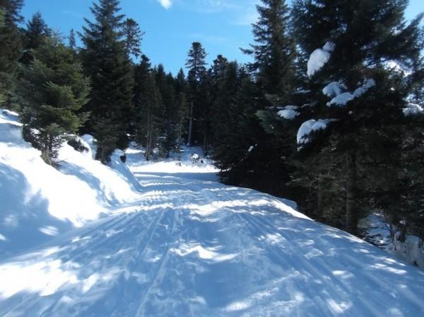 Col d'Aspin (vélo + marche) le 13 février 2015 099
