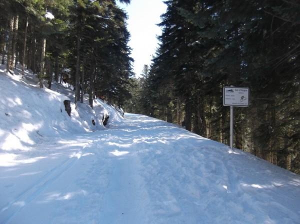 Col d'Aspin (vélo + marche) le 13 février 2015 113
