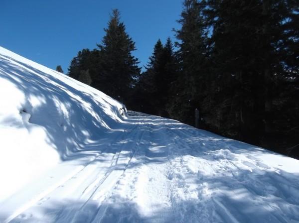Col d'Aspin (vélo + marche) le 13 février 2015 118