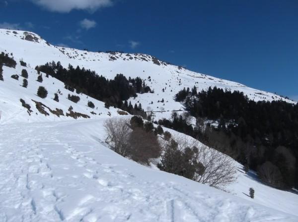 Col d'Aspin (vélo + marche) le 13 février 2015 127
