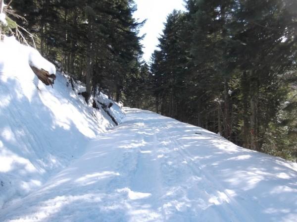 Col d'Aspin (vélo + marche) le 13 février 2015 141