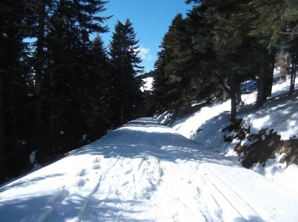 Col d'Aspin (vélo + marche) le 13 février 2015 186