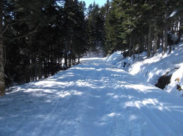 Col d'Aspin (vélo + marche) le 13 février 2015 187