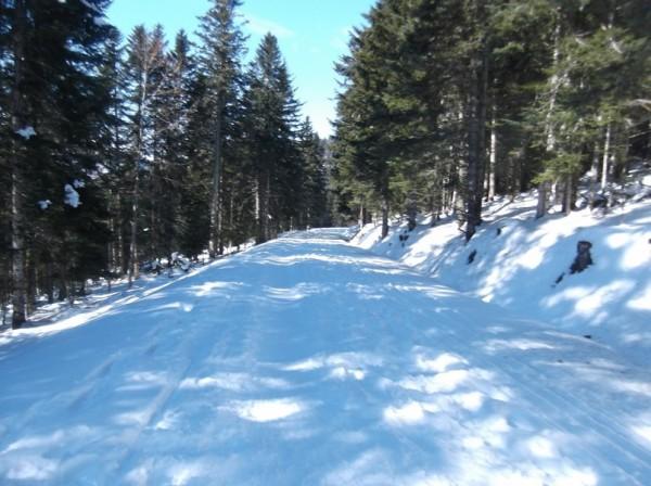 Col d'Aspin (vélo + marche) le 13 février 2015 195