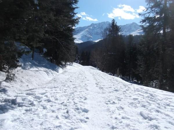 Col d'Aspin (vélo + marche) le 13 février 2015 198