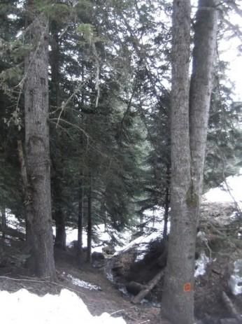 Col d'Aspin 20 mars 2015 110